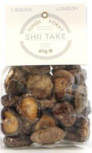Fungi Foray Wild Shii Take Mushroom